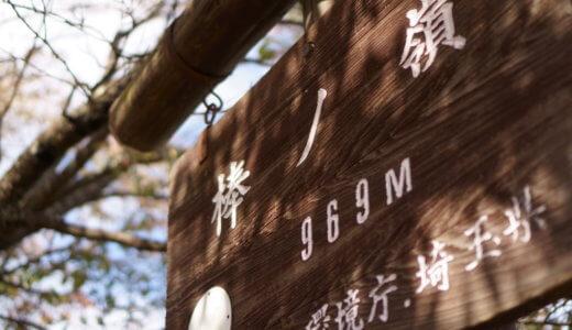 日帰りおすすめの山 棒ノ折山(棒ノ嶺)
