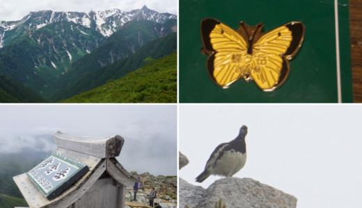 テント泊山歩き 北アルプス・蝶ヶ岳と常念岳